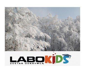 Urodziny z Labokids dla dzieci w Poznaniu