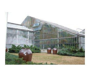 Wystawa storczyków w Palmiarni
