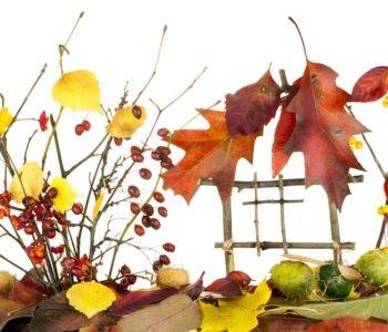 Jesienna zabawa plastyczna dla dzieci