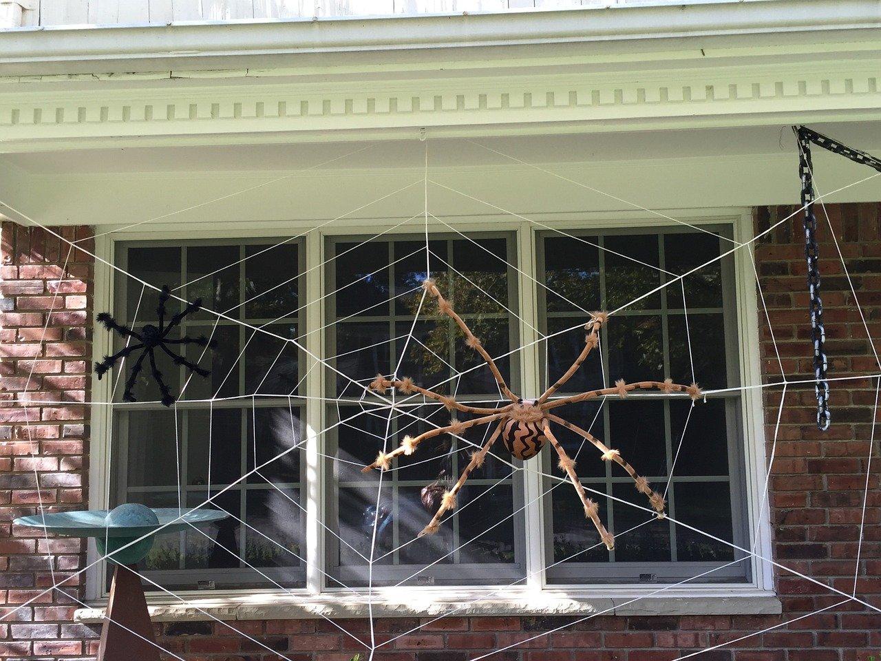 Pająki i pajęczyna na halloween w twoim domu - zabawa plastyczna dla dzieci