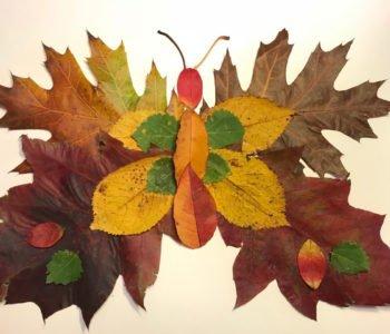 Motyle z jesiennych liści