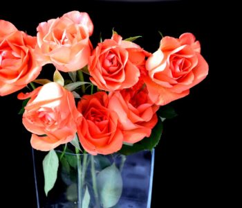 Wazonik z płatkami róży