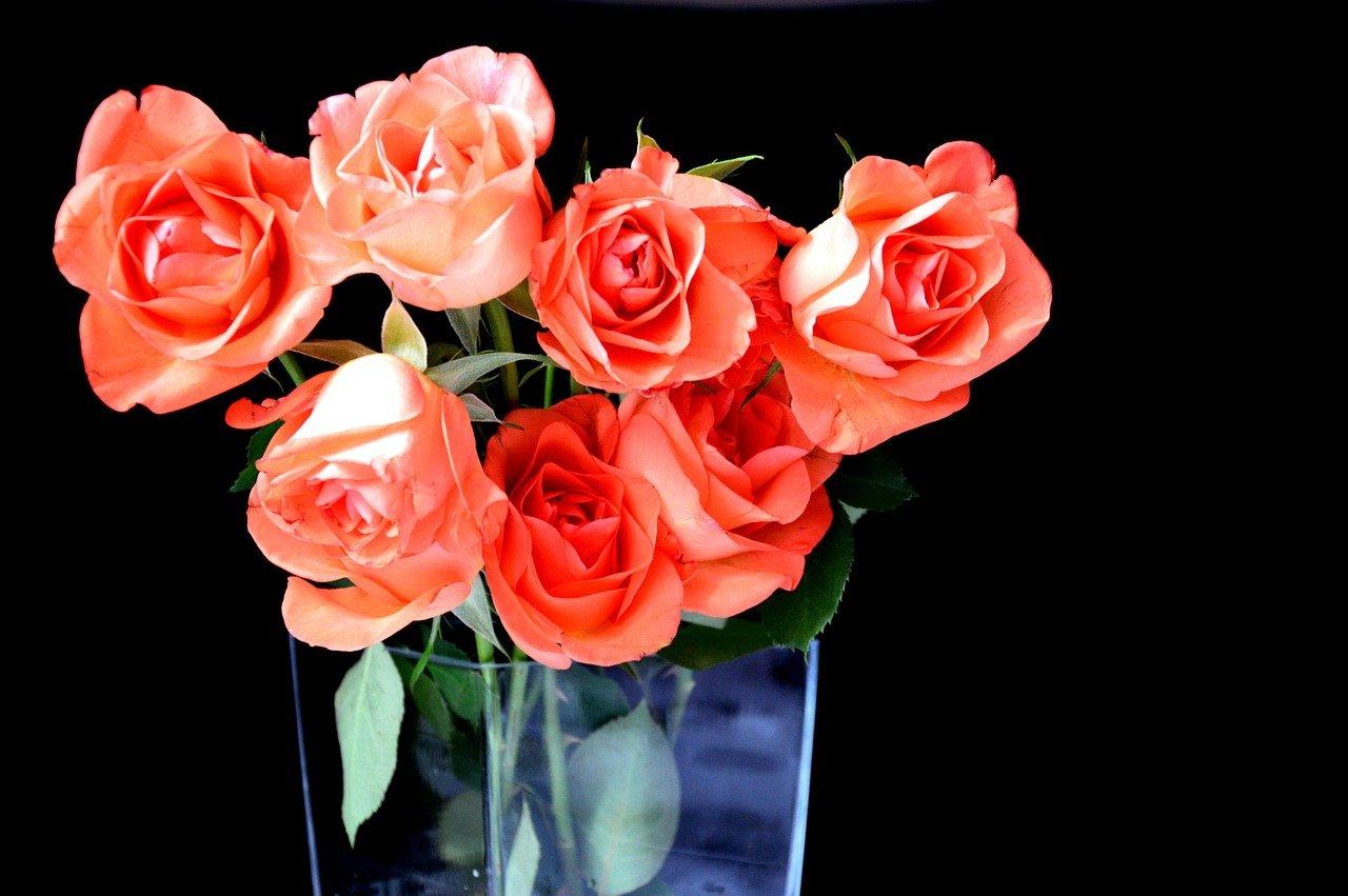 wróżby andrzejkowe pixabay wazon kwiaty róże