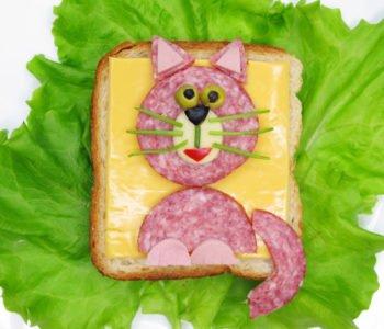 Kotek na kanapce zabawne przepisy dla dzieci