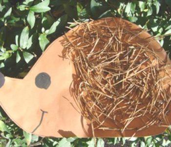 Leśny jeż – zabawa z igłami