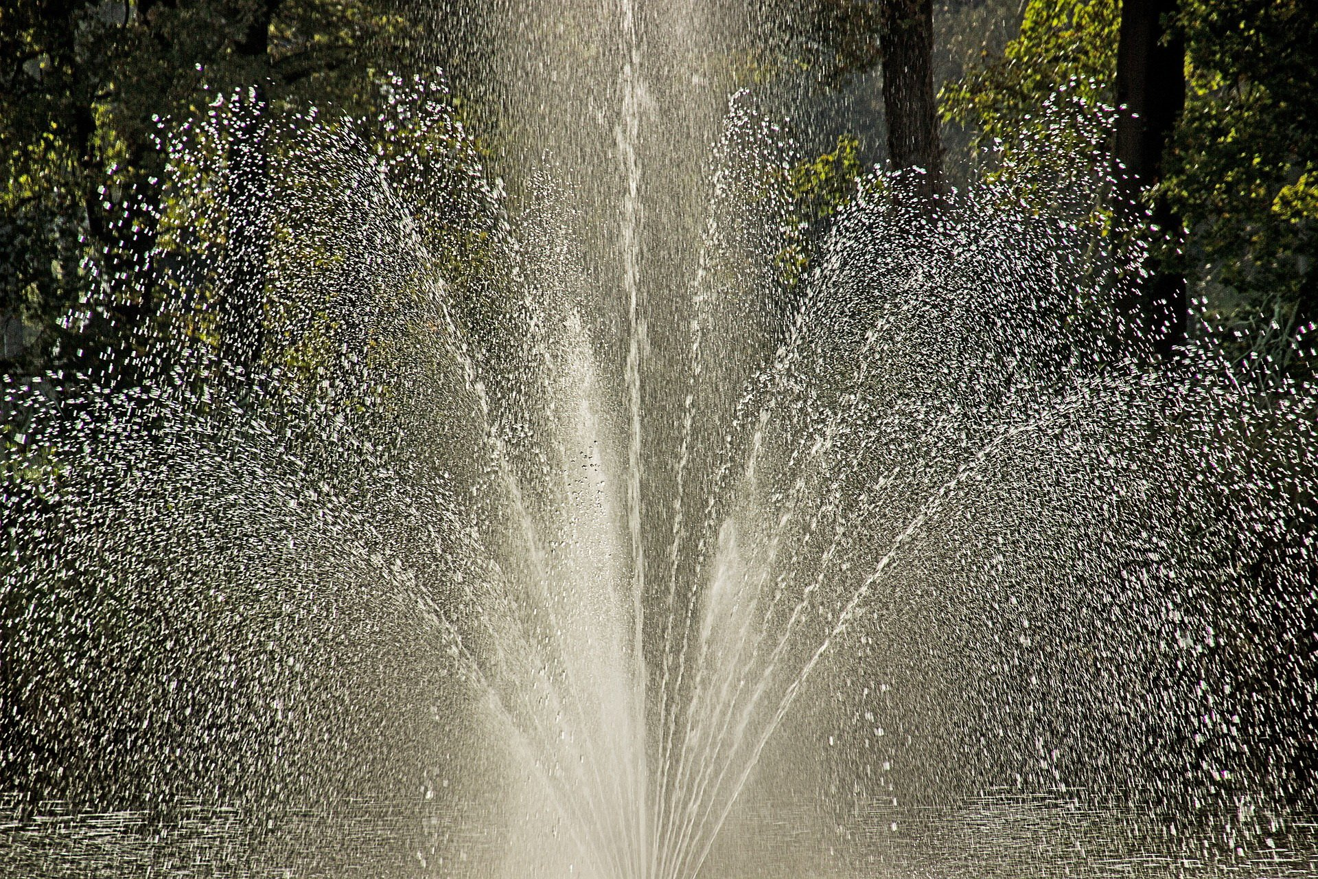 Warszawskie fontanny