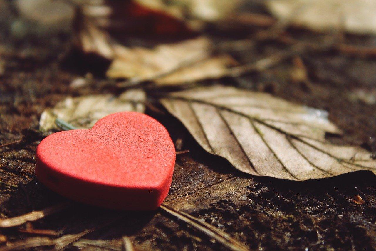 pixabay walentynki serce