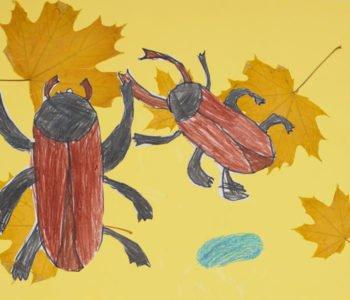 Żuczki na mchu, na liściach – zabawa jesienna