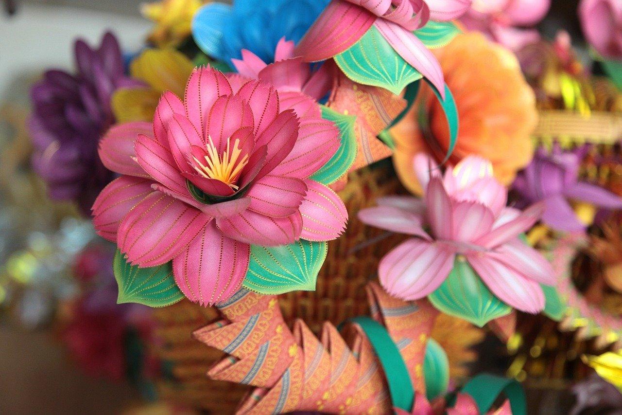 pixabay kwiaty