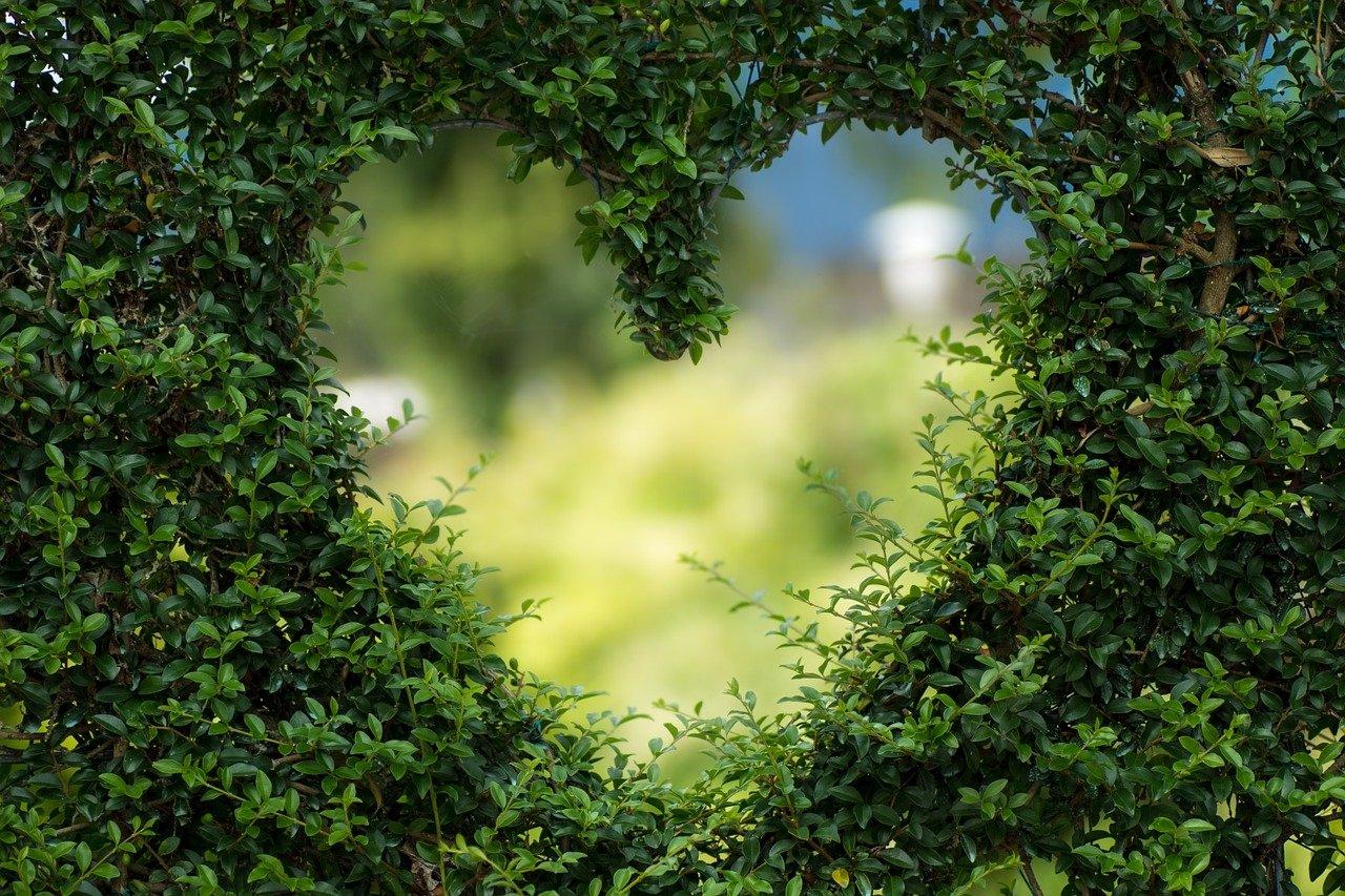 Walentynkowe wyznanie wierszyk dla dzieci życzenia na Walentynki