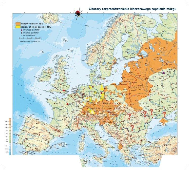 Kleszczowe-Zapalenie-Mózgu-czy-ryzyko-infekcji-w-Polsce-narasta