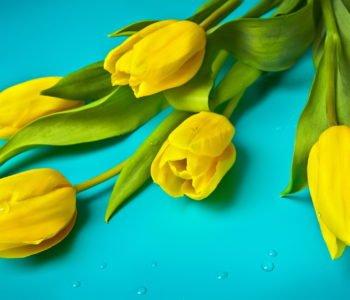 8 marca Dzień Kobiet w Polsce tradycyjnie
