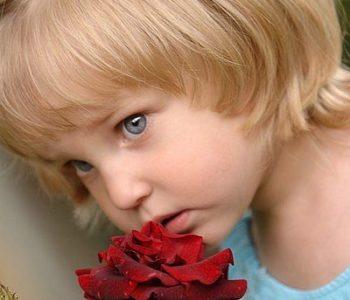 Święto-Kwiatów-na-VII-Festiwalu-Róż