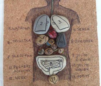 Ciało człowieka – układanka z kamyków
