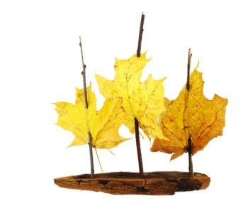 Jesienna łódeczka z kory z żaglami z liści