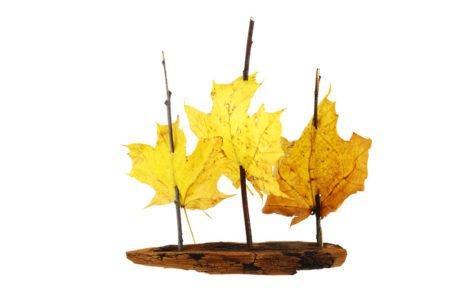 Łódka z jesiennych liści zabawy dla dzieci