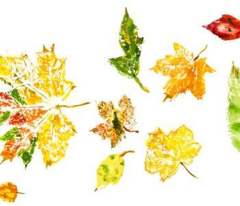 Stempelki z liści – odbijanie liści