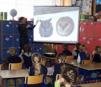 Program-edukacyjny-Sowy-Polski