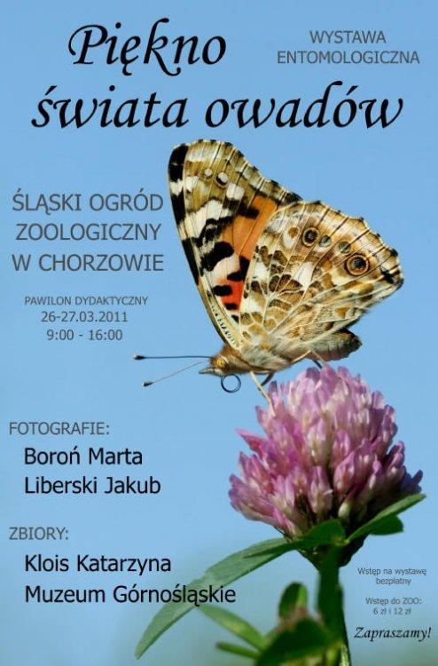 Wystawa owadów w Śląskim Ogrodzie Zoologicznym