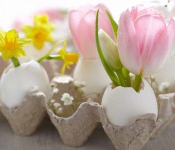 Wielkanocna ozdoba stołu – kwiaty w wydmuszkach