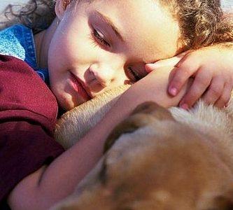 Jaki pies do domu z dzieckiem. Kupujemy psa.