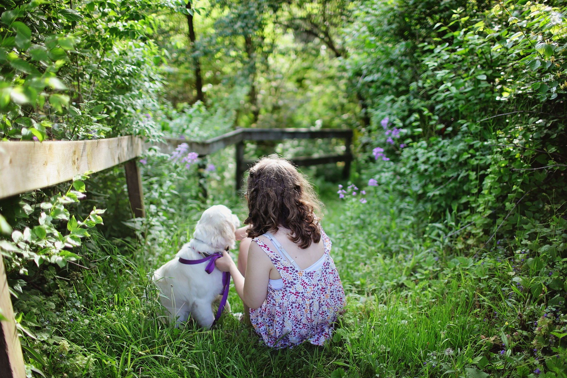 pies w prezencie dla dziecka