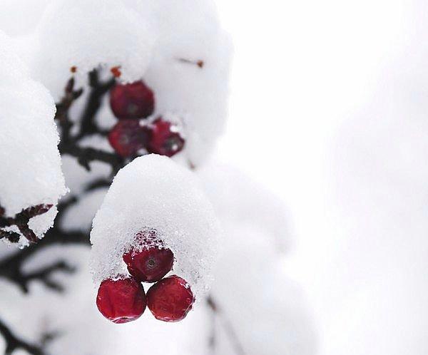 Zima w mieście 2012 Kraków