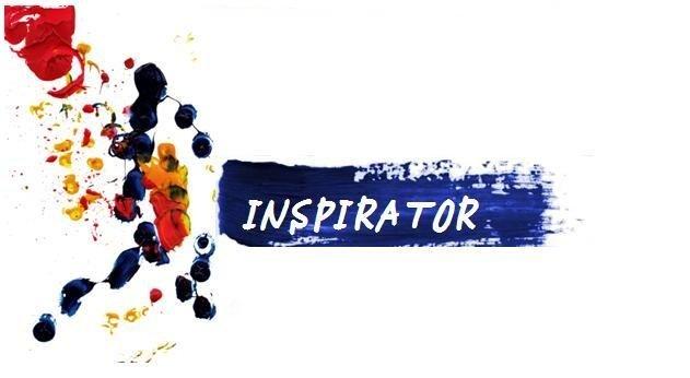 AIESEC – program Inspirator