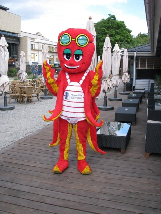 lato 2012 – Gdynia