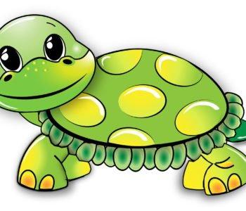Amory żółwia