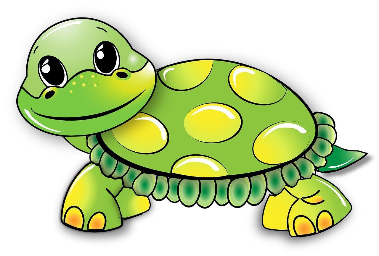 Wierszyk dla dzieci o żółwiu