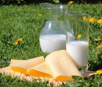 Alergie pokarmowe u dzieci. Alergia na białko mleka krowiego