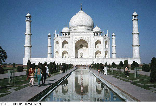 Podróż do Indii z Myszką Norką