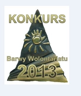 Barwy Wolontariatu 2013