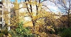Powitanie jesieni w Domu Józefa Mehoffera