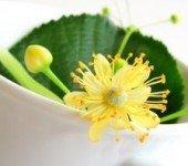 Napary ziołowe leczą