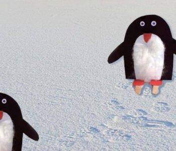 pingwiny1