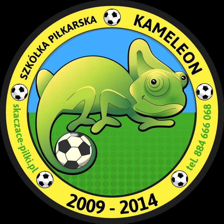 Szkółka Piłkarska Kameleon – Skaczące Piłki