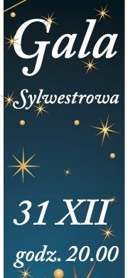Gala Sylwestrowa 2014 – L'azione musicale