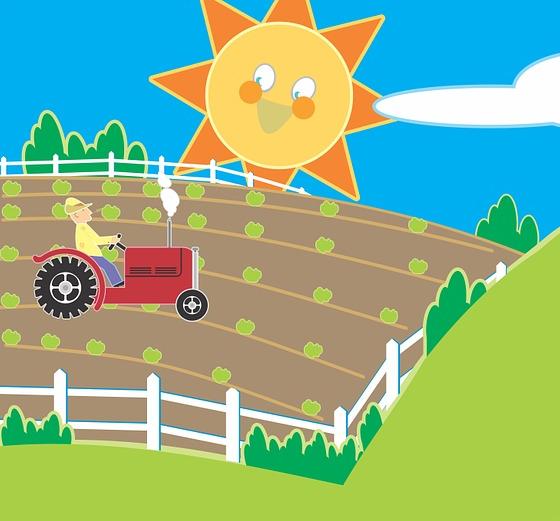 pole i traktor na polu