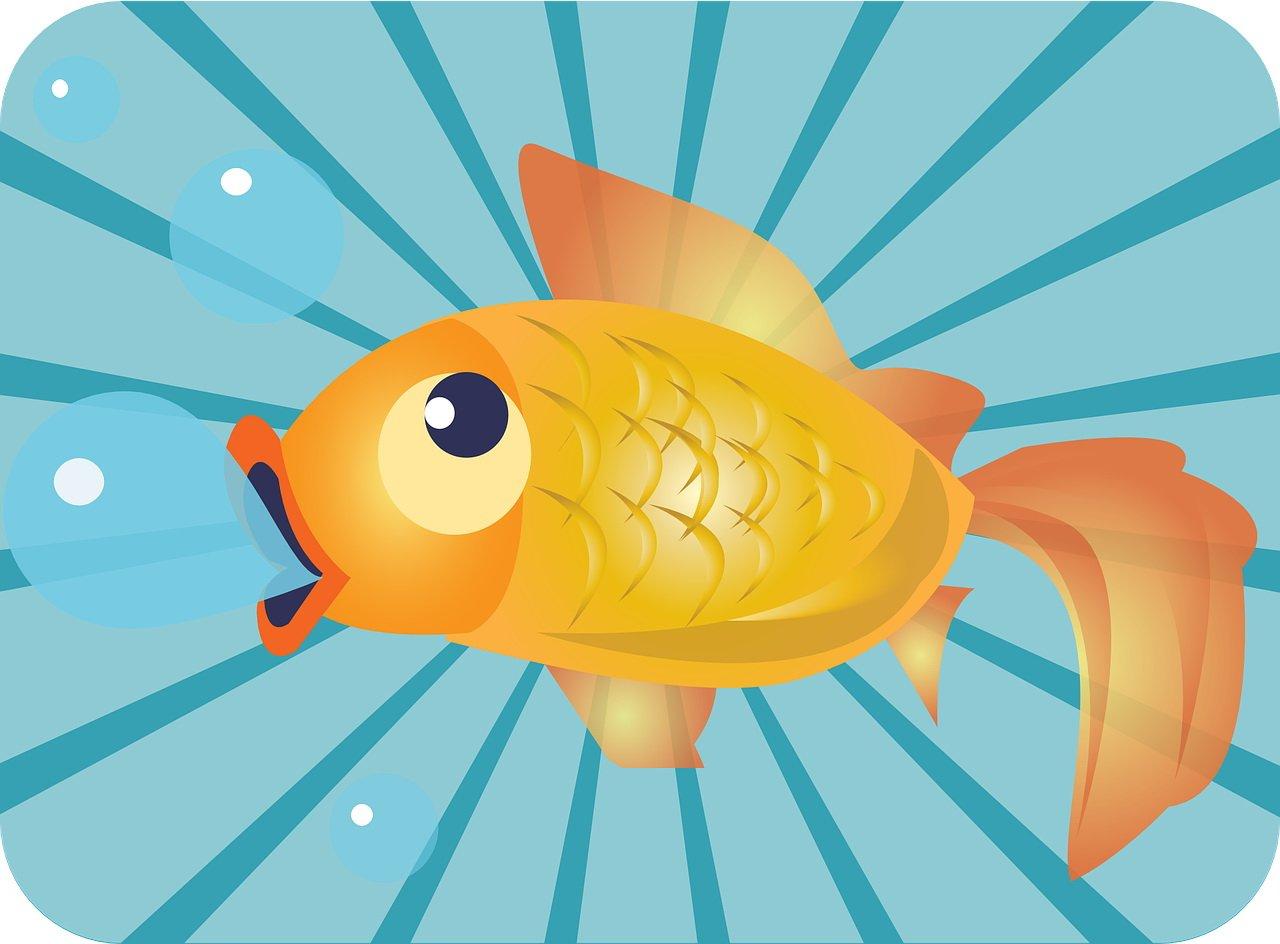Bajka dla dzieci do czytania o złotej rybce