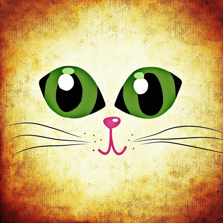 obrazek kota z zielonymi oczami