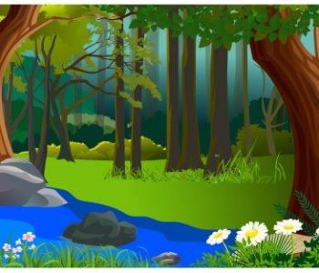 Bajka spacer po lesie