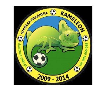 logo skaczące piłki