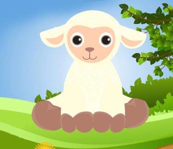 Fryzura owcy