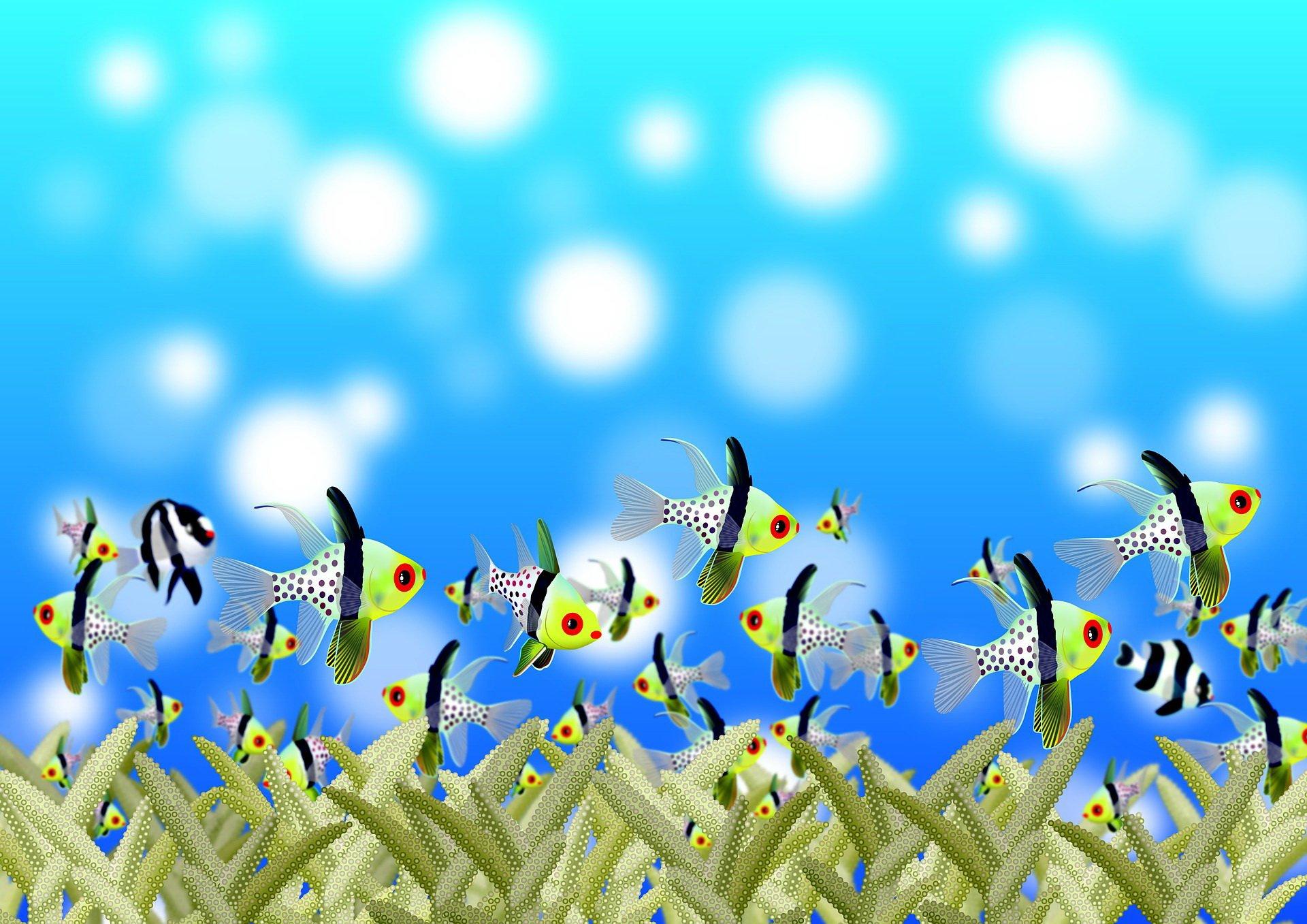Bajka dla dzieci ocean ryby