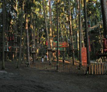 Leśny Park Linowy w Olsztynie