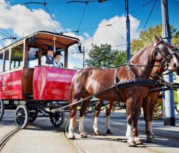 Magiczna podróż Omnibusem Konnym