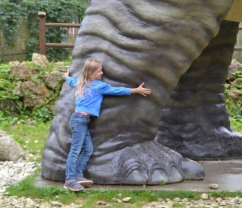 Jurapark w Bałtowie – zabawa dla całej rodziny