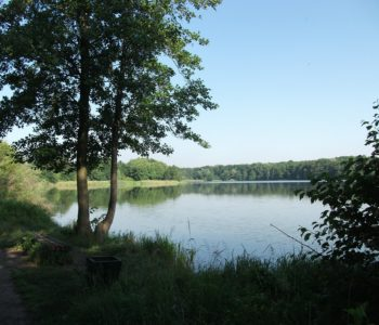 Jezioro Rusałka i Golęcin